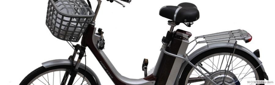 Vendita On Line Di Biciclette Bicicletta Elettrica Elettriche Con